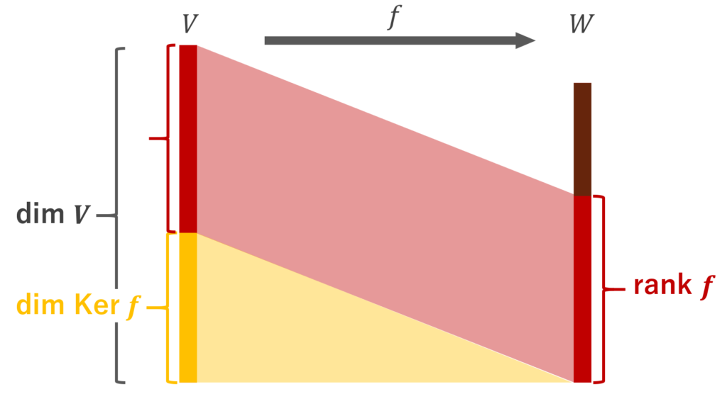 dim V = rank f + dim Ker f のイメージ